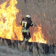 Firefighters Battle A Wildfire In Spring. Smoke Field And Fireman After Wildfire.Fire. Wildfire Bur